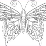 Coloring Butterflies New Photography Butterfly Coloring Pages