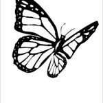Coloring Butterflies Unique Collection Butterfly Coloring Pages