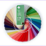 Coloring Fans Awesome Collection Color Swatch Fan With 35 Colors For Season Type Soft Autumn