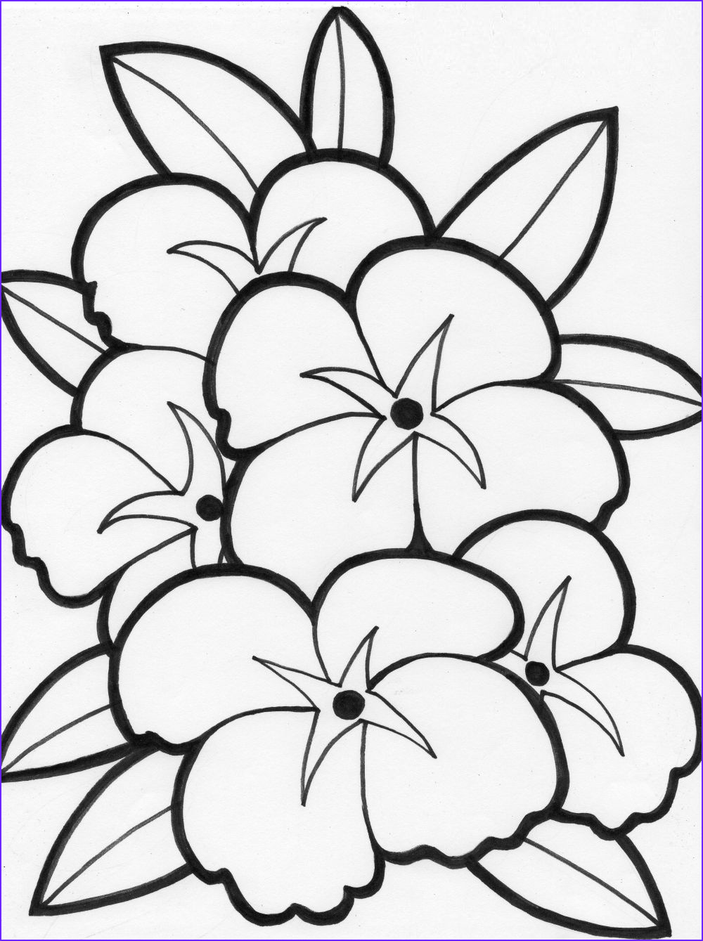 Coloring for Teens Unique Photos Coloring Pages Of Flowers for Teenagers Difficult