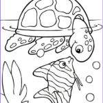 Coloring For Toddlers Luxury Image Free Printable Turtle Coloring Pages For Kids Picture 4