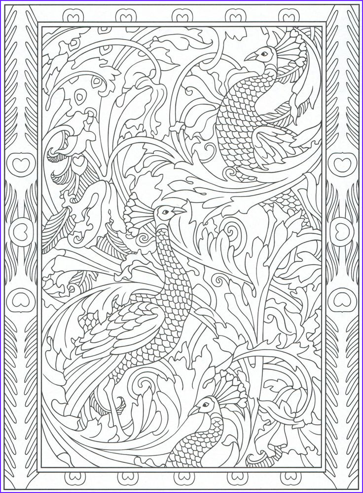 Coloring Images for Adults Beautiful Photos Peacock Coloring Page for Adults 5 31