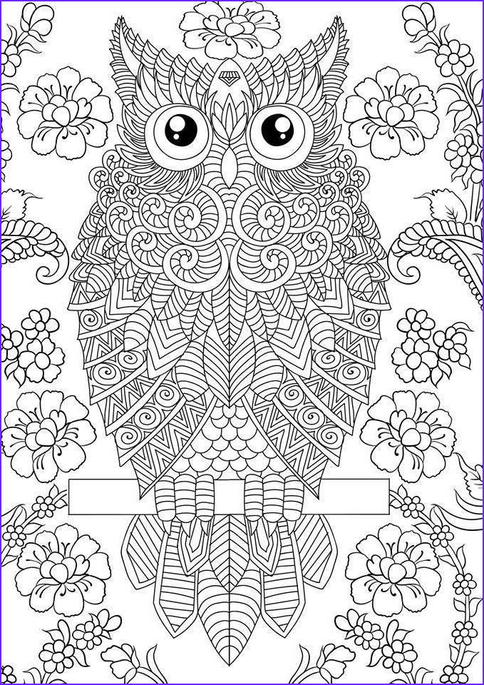 Coloring Images for Adults Elegant Stock Pin by Ann Furnas On Design Patterns