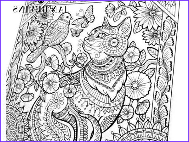 Coloring Images for Adults Unique Photos Coloring Book for Adults Large Spiral Bound by Jan