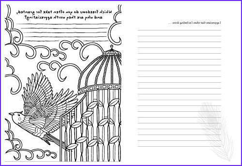 tiny buddhas gratitude journal questions prompts and coloring pages for a brighter happier life