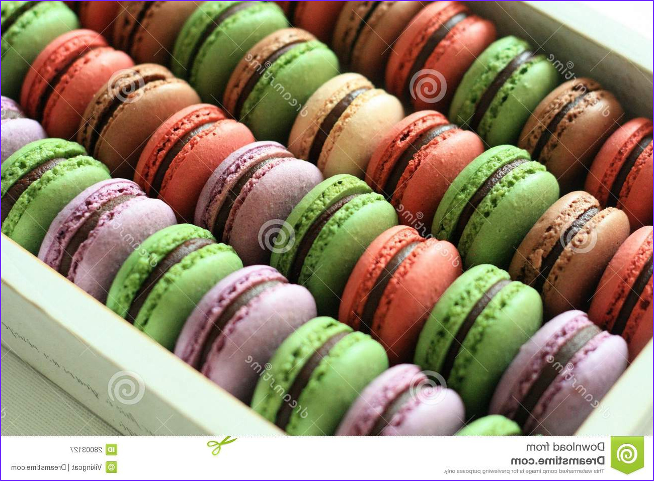 royalty free stock photography macarons color image