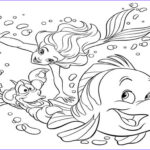 Coloring Mermaid Inspirational Image Graph For Ocean Animals Auto Electrical Wiring Diagram