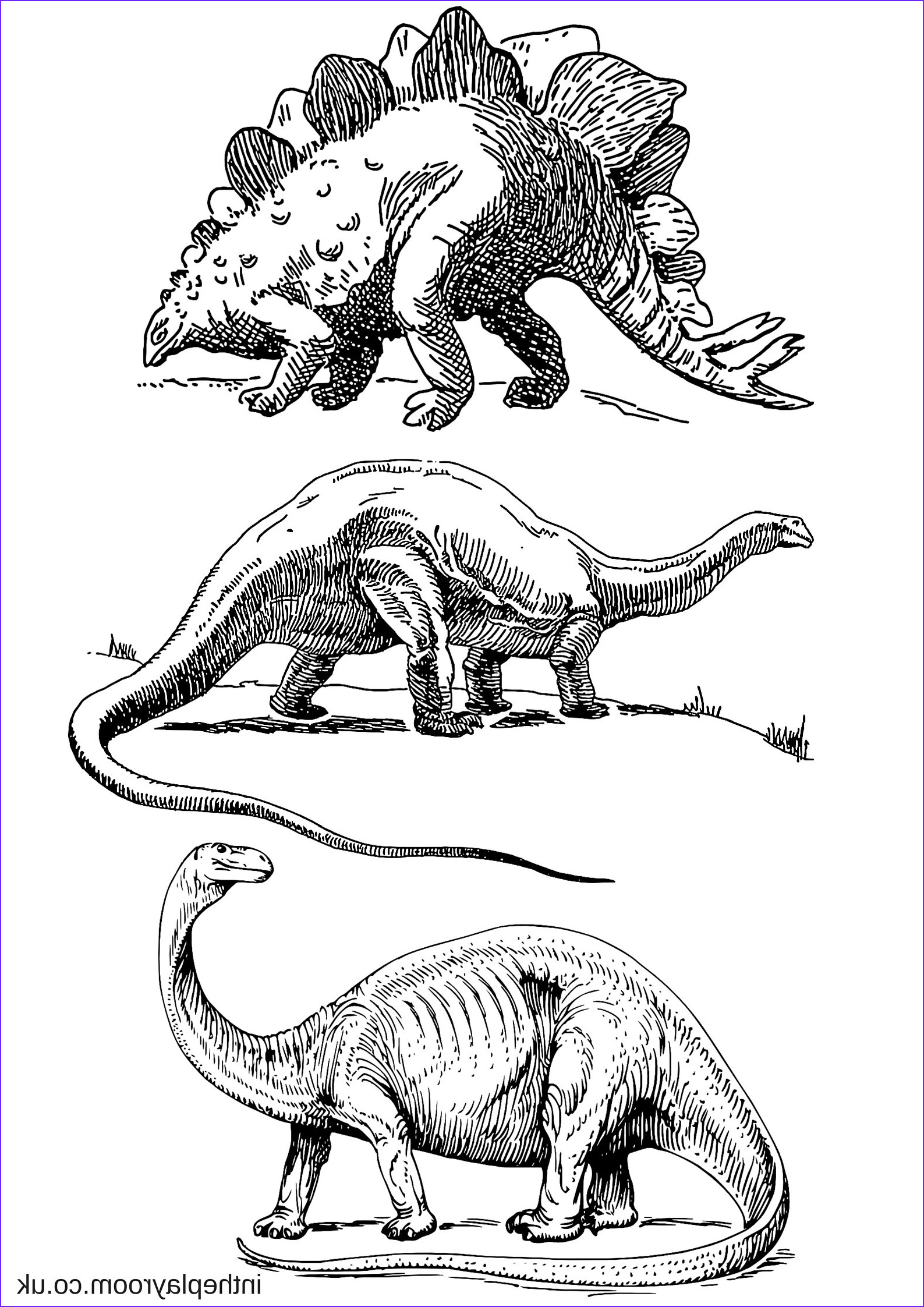 Coloring Page Dinosaur Best Of Gallery Dinosaur Colouring Pages In the Playroom