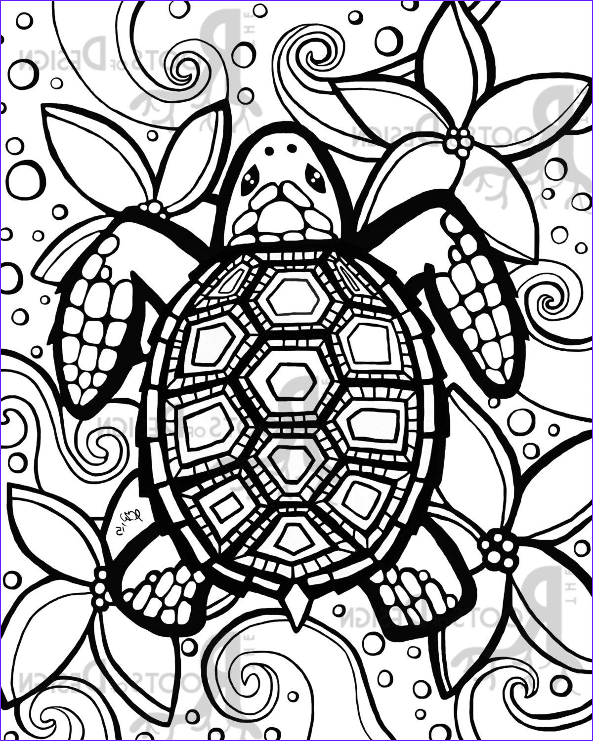 Coloring Page Turtle Beautiful Stock Turtle Coloring Pages Google Search