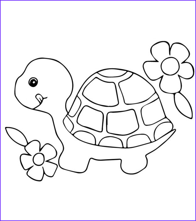 Coloring Page Turtle Elegant Gallery top 20 Free Printable Turtle Coloring Pages Line