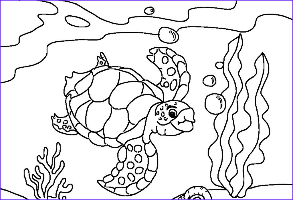 Coloring Page Turtle New Image Free Printable Sea Turtle Coloring Pages for Kids