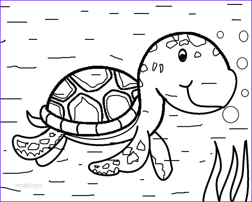 Coloring Page Turtle New Image Printable Sea Turtle Coloring Pages for Kids