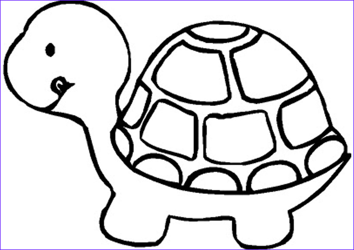 Coloring Page Turtle New Photos Free Printable Turtle Coloring Pages for Kids