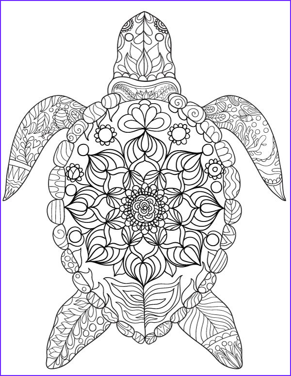 Coloring Page Turtle New Stock Pin by Muse Printables On Adult Coloring Pages at