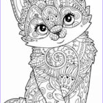 Coloring Pages Animals Best Of Stock Cat Animal Mandala Coloring Pages Mandala Coloring Pages