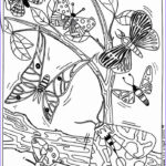 Coloring Pages Butterfly Inspirational Gallery Butterflies Coloring Pages Hellokids
