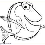 Coloring Pages Com Beautiful Stock Realistic Fish Coloring Pages Fishing Coloring Pages