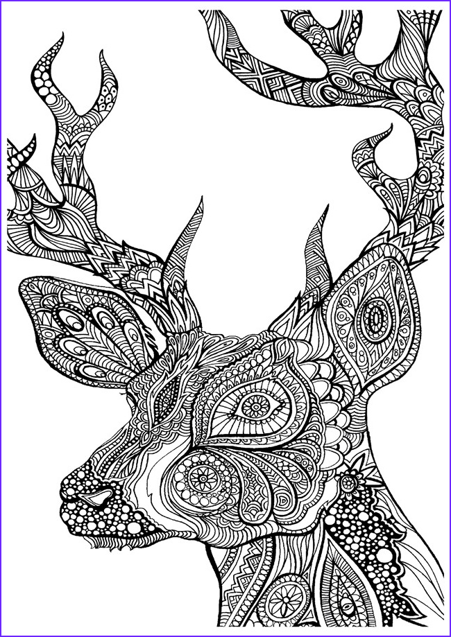 Coloring Pages Designs Elegant Photos Printable Coloring Pages for Adults 15 Free Designs