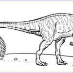 Coloring Pages Dinosaurs Cool Photos Velociraptor Coloring Pages Best Coloring Pages For Kids