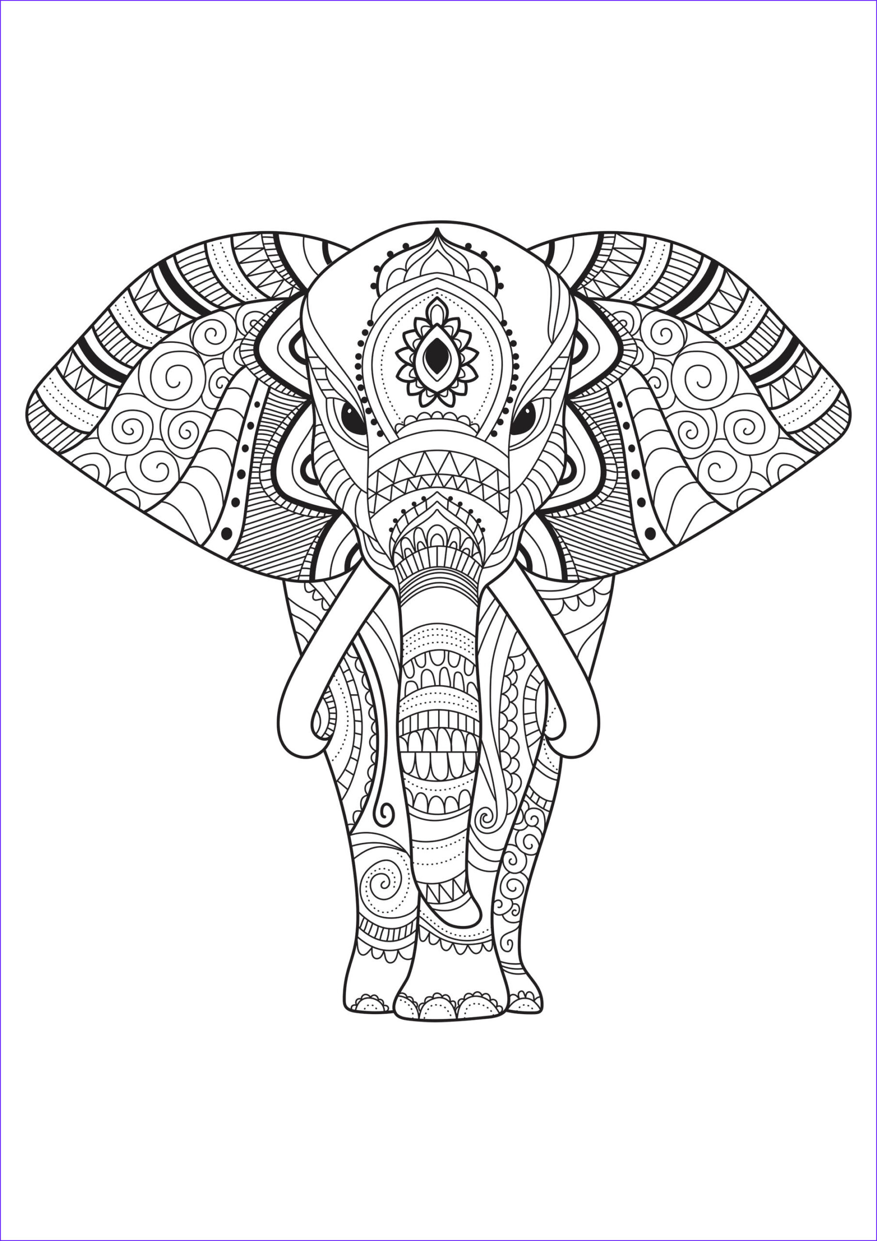 image=elephants coloring elephant with patterns 1 1