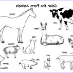 Coloring Pages Farm Animals Cool Images Farm Animals Coloring Page