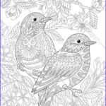 Coloring Pages For Adults Flowers Beautiful Photos Coloring Pages For Adults Love Birds Spring Flowers