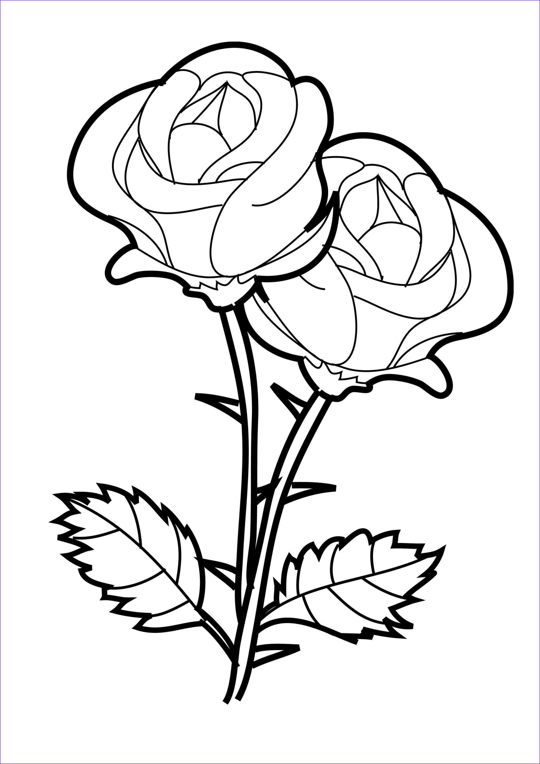 Coloring Pages for Flowers Elegant Images Flower Coloring Pages Crosses