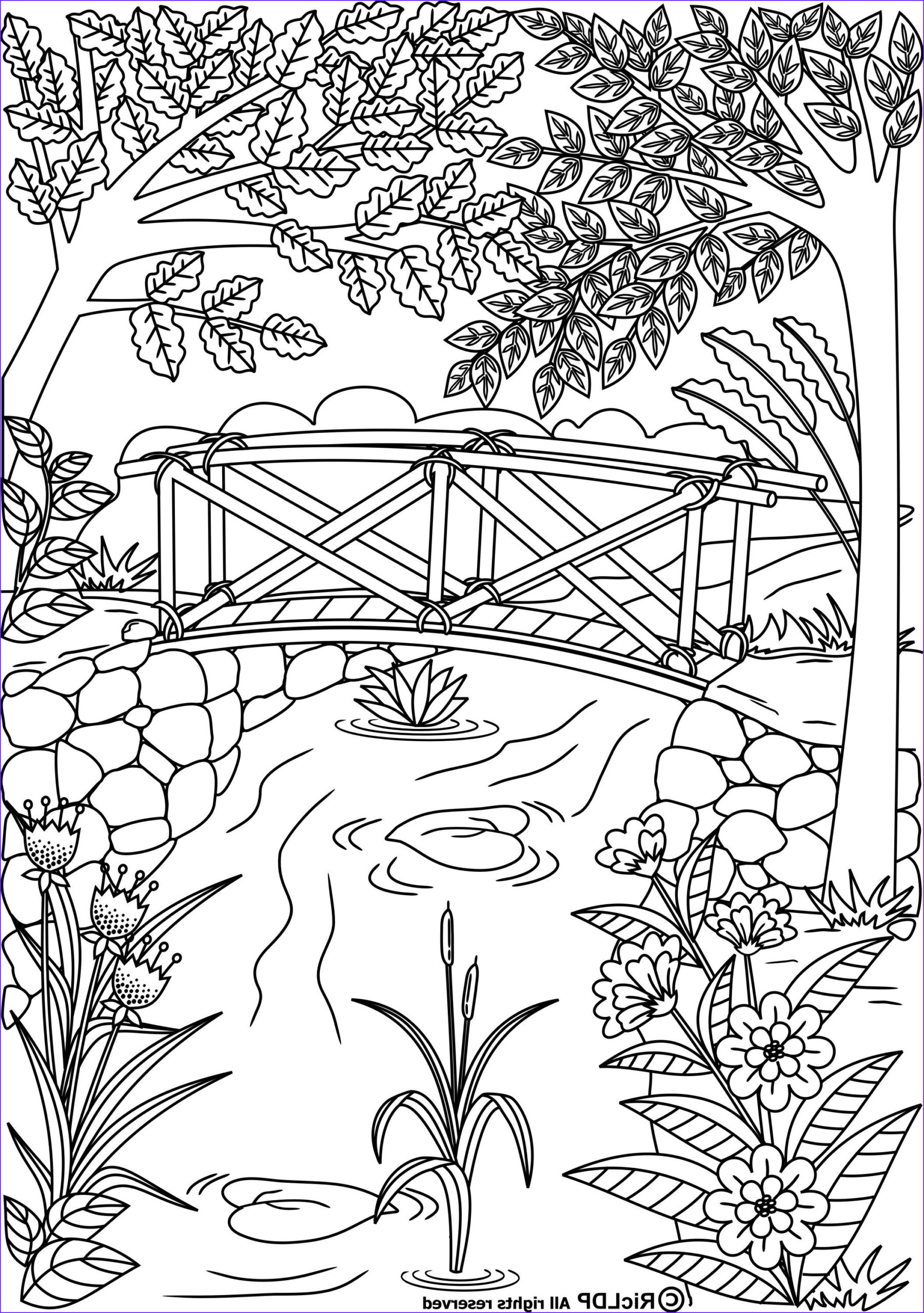 Coloring Pages for Grown Ups Cool Gallery Twenty Coloring Pages for Grown Ups