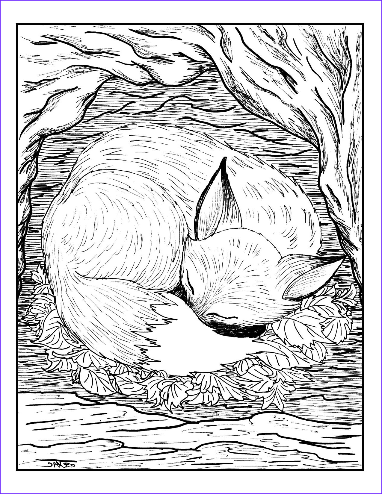 Coloring Pages for Grown Ups Elegant Photography Free Coloring Pages for Grown Ups Fox Sleeping Gianfreda