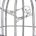 Coloring Pages For Kida Beautiful Gallery Printable Parrot Coloring Pages For Kids