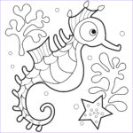 Coloring Pages For Toddlers Awesome Photography Free Printable Seahorse Coloring Pages For Kids