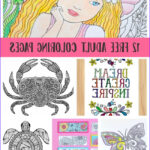 Coloring Pages Free For Adults Unique Image 12 Free Printable Adult Coloring Pages For Summer