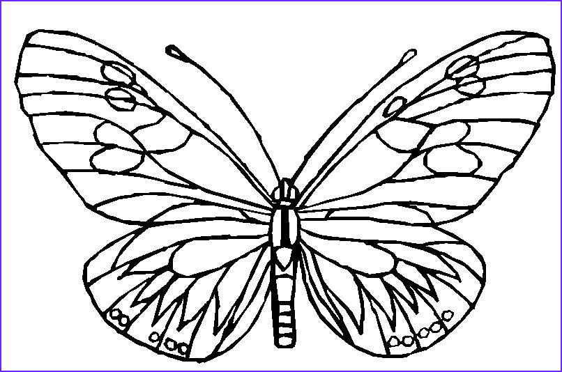 Coloring Pages Of butterflies Elegant Collection butterfly