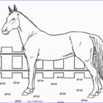 Coloring Pages Of Horses Elegant Images Free Printable Horse Coloring Pages for Kids
