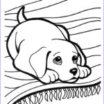 Coloring Pages Of Puppies New Photos Puppy Coloring Pages Best Coloring Pages For Kids