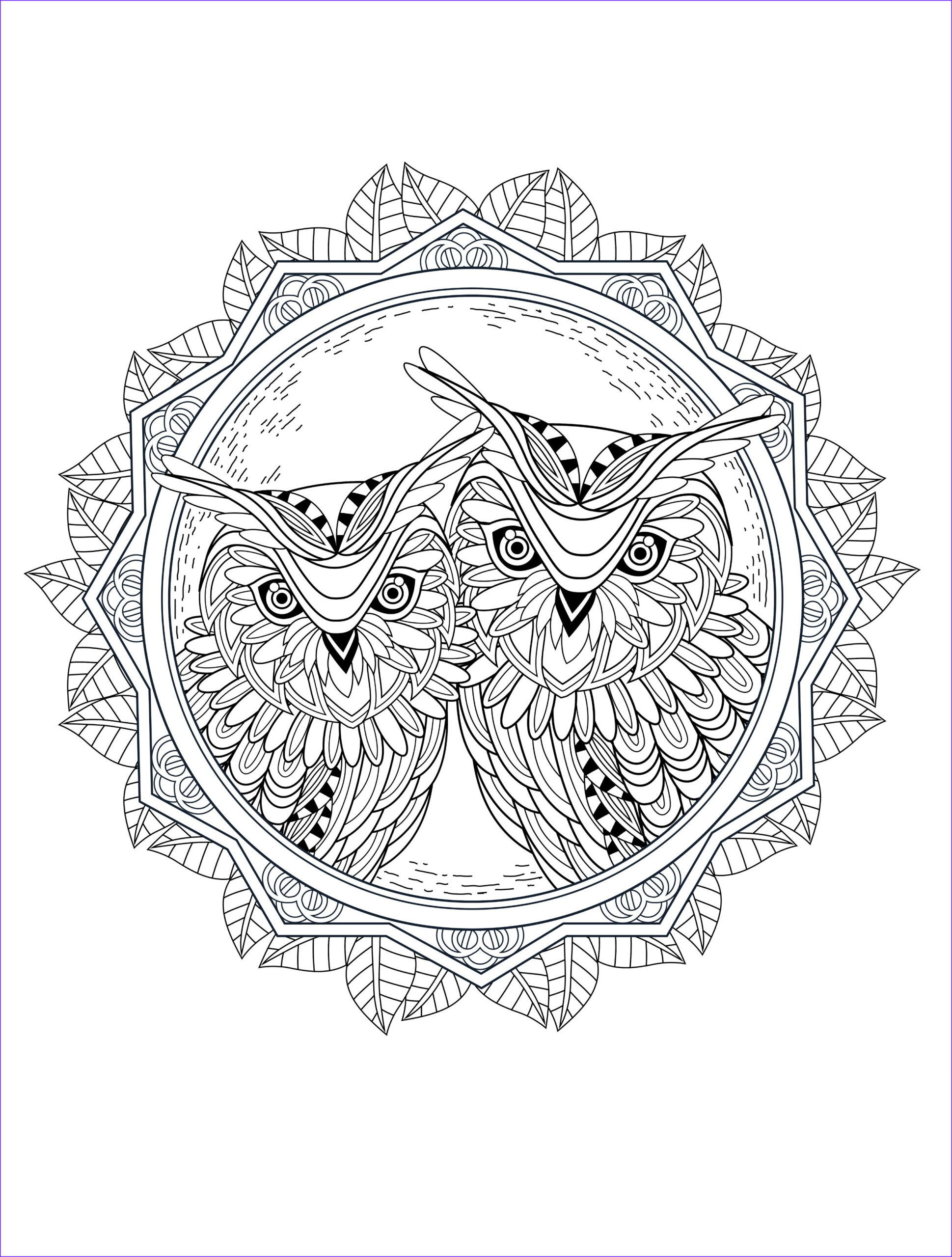 Coloring Pages Printable Adults Beautiful Gallery Owl Coloring Pages for Adults Free Detailed Owl Coloring