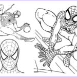 Coloring Pages To Print Out Beautiful Image Free Printable Spiderman Coloring Pages For Kids