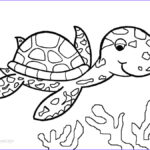 Coloring Pages Turtles Beautiful Collection Printable Sea Turtle Coloring Pages For Kids