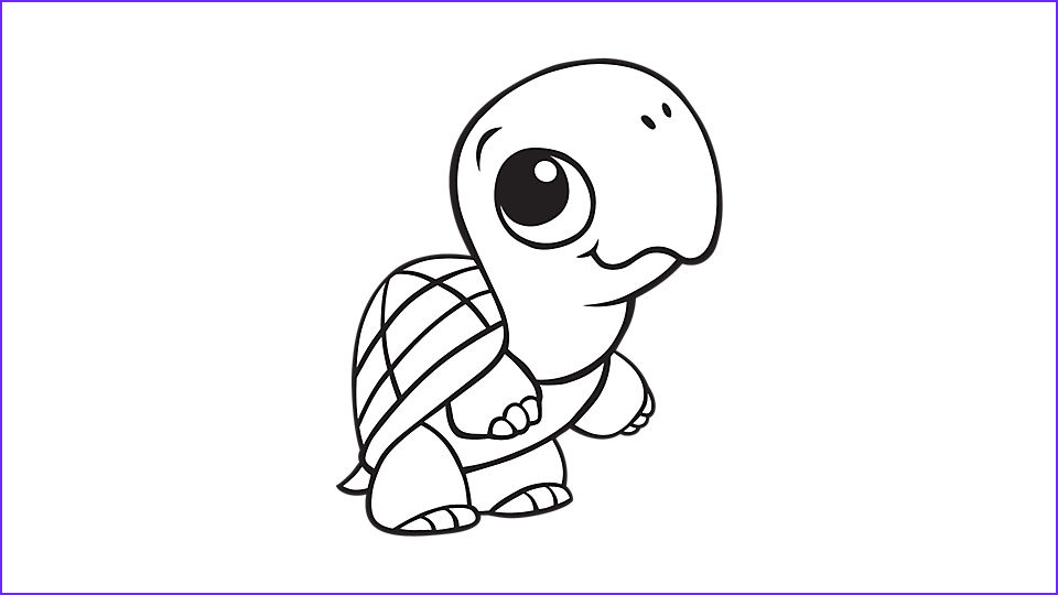 baby animal coloring pages turtle