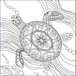 Coloring Pages Turtles Beautiful Photography Leatherback Sea Turtle Drawing At Getdrawings