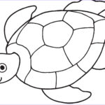 Coloring Pages Turtles Beautiful Photos Sea Turtle Coloring Page Tweeting Cities Free Coloring