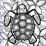 Coloring Pages Turtles Unique Images Instant Download Coloring Page Turtle Zentangle By Rootsdesign