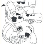 Coloring Paw Patrol Awesome Photography Paw Patrol Coloring Pages Printable Coloring Home