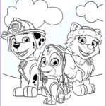 Coloring Paw Patrol Beautiful Image Paw Patrol Coloring Pages