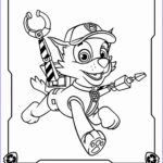 Coloring Paw Patrol Beautiful Photos Paw Patrol Coloring Pages Coloring Home