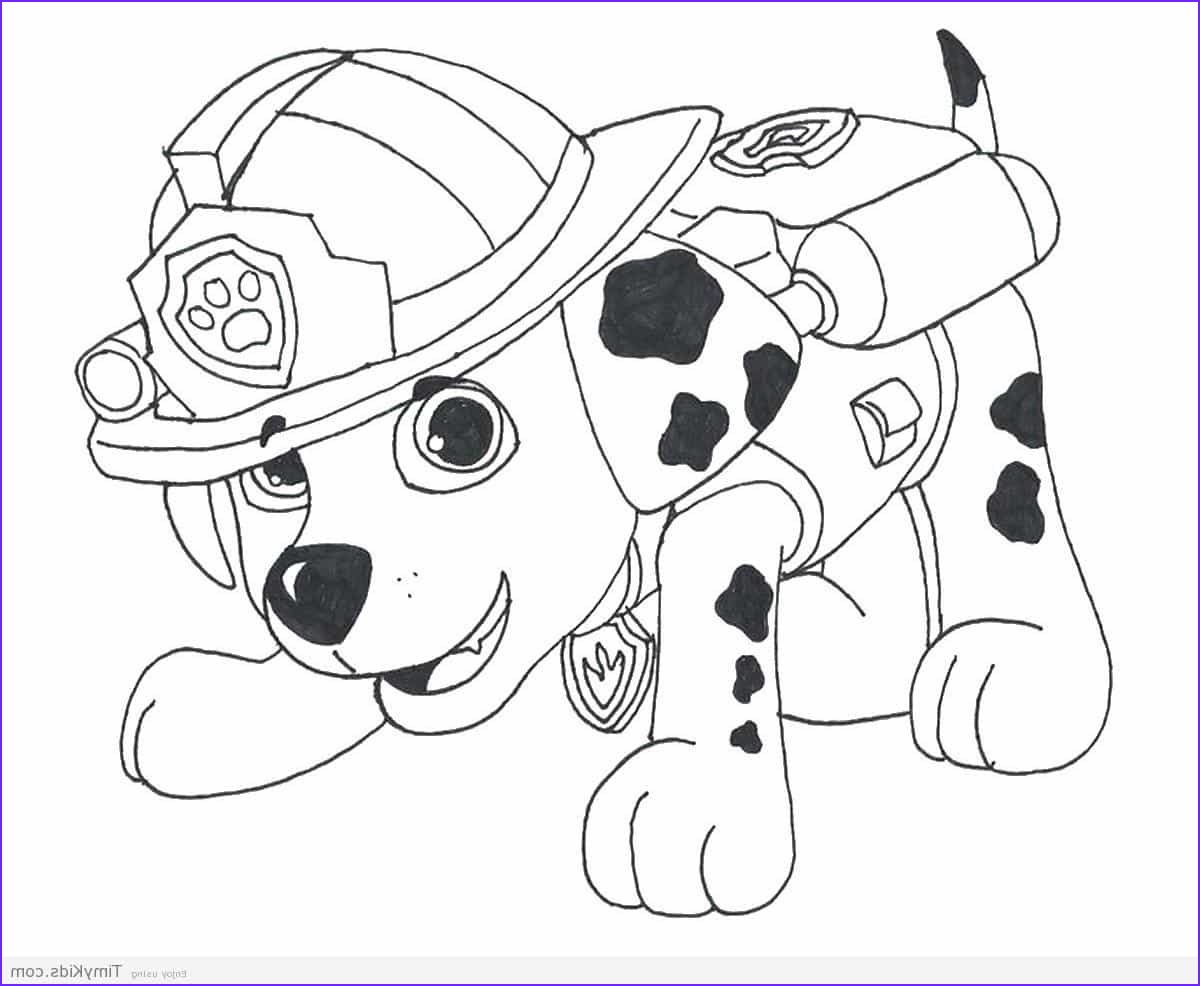Coloring Paw Patrol Beautiful Photos Paw Patrol Coloring Pages Timykids