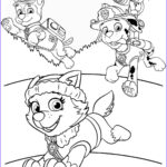 Coloring Paw Patrol Inspirational Gallery Free Nick Jr Paw Patrol Coloring Pages