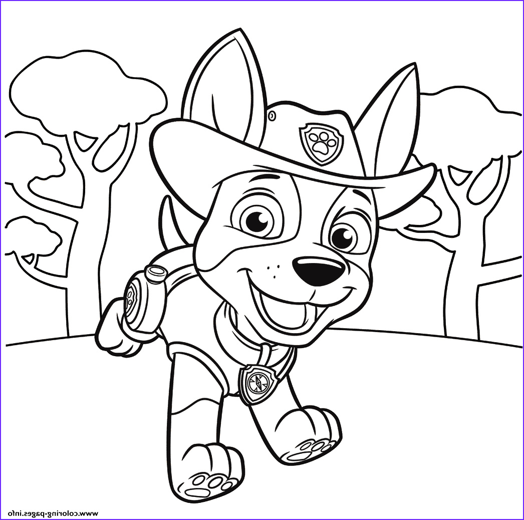 jungle pup tracker paw patrol printable coloring pages book
