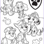 Coloring Paw Patrol Luxury Gallery Paw Patrol Coloring Pages