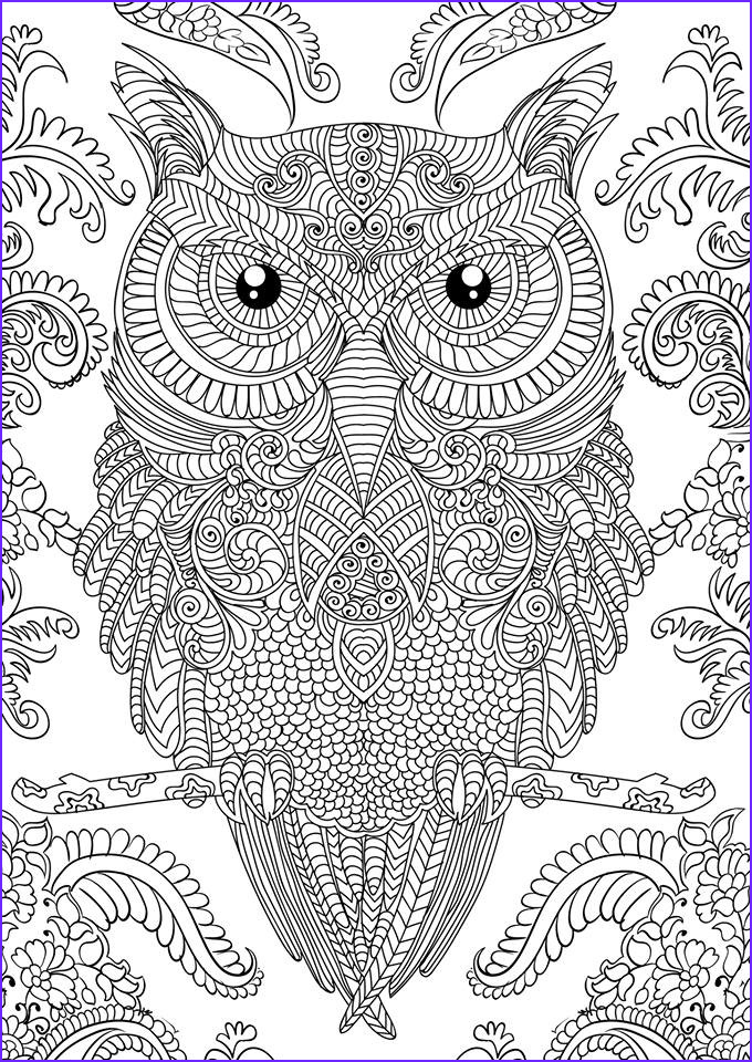 Coloring Pictures for Adults Awesome Stock Owl Coloring Pages for Adults Free Detailed Owl Coloring